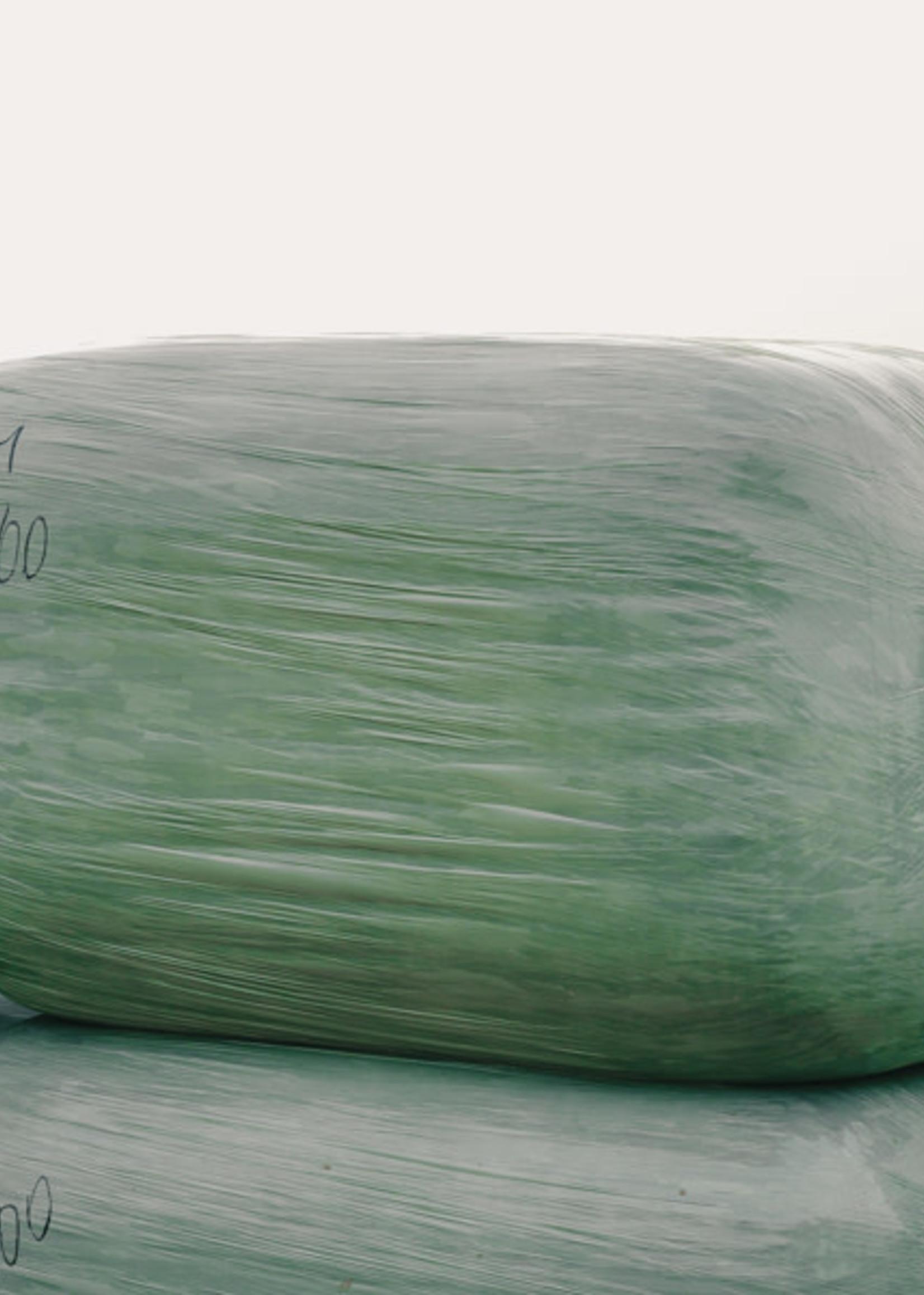 De Hagendoorn Maïs 500 kg
