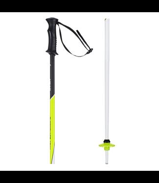 Head Supershape Team Ski Pole