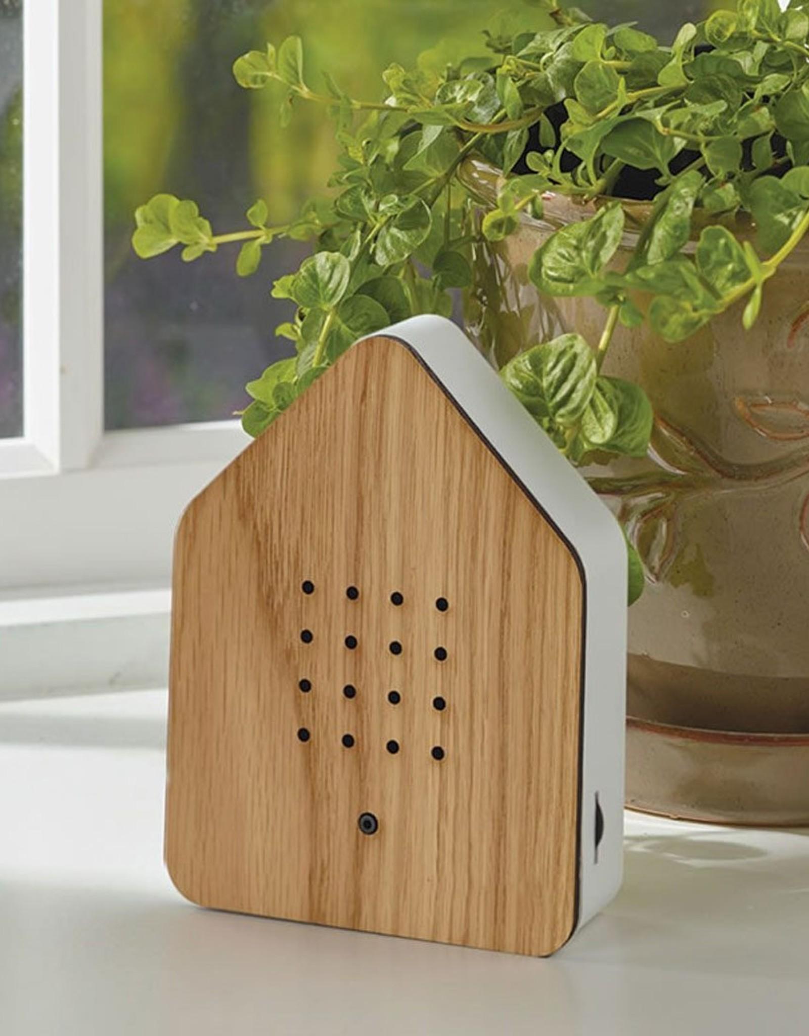 Zwitscherbox relaxing bird sound box