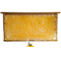 Honingraat honing in frame (ca 2kilo)