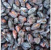 Gedroogde Pruimen uit Murdun (TR) Zonder Pit 1kg