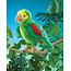 Folkmanis Amazone papegaai handpop