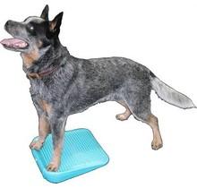 Dog Balance Ramp 35 cm