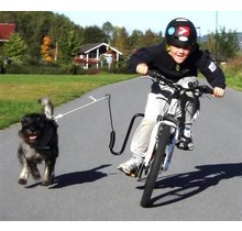 De springer voor fietsen met de hond