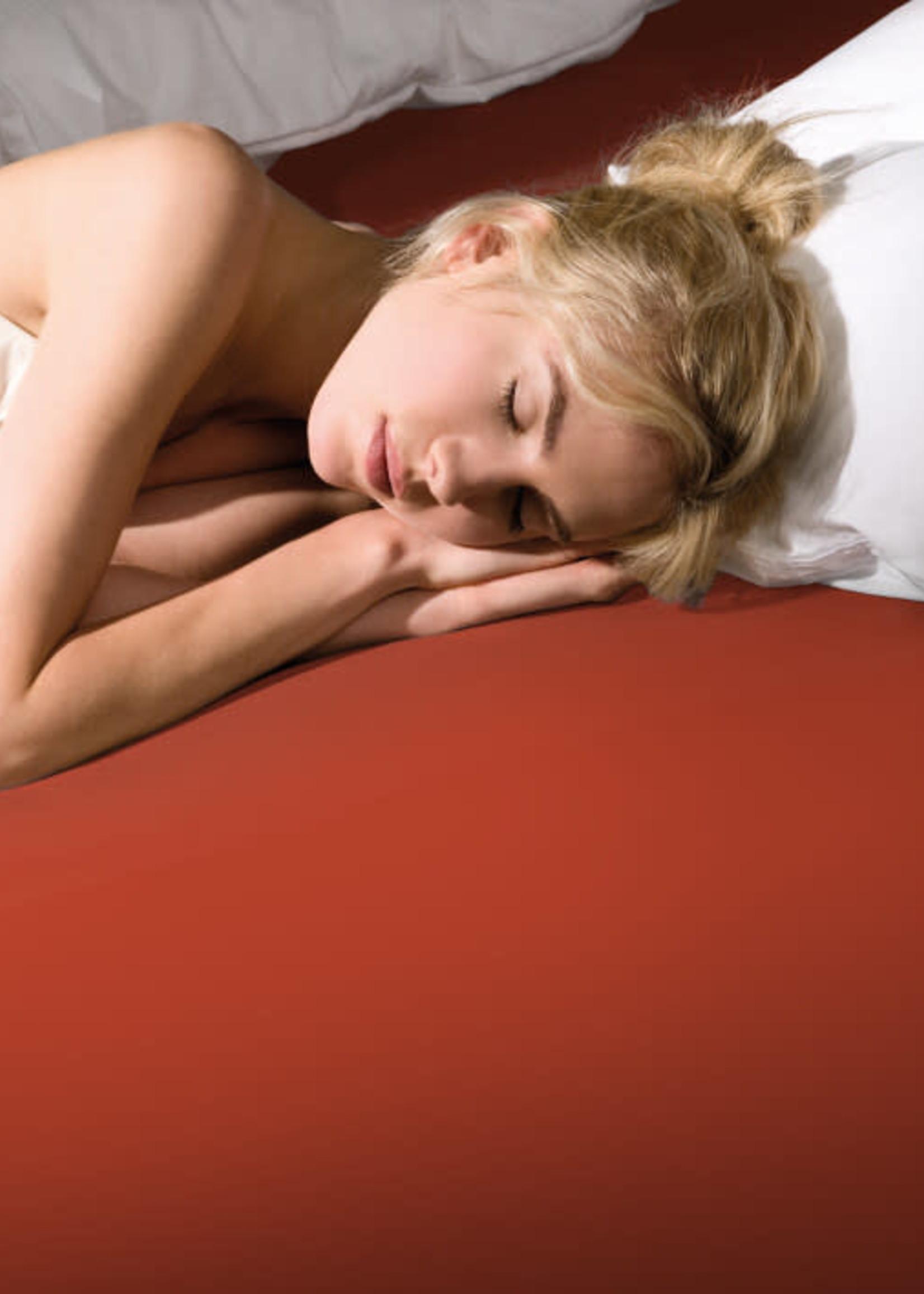 Bella Gracia Bella Gracia HL STANDAARD Jersey kleur: