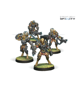 Infinity Chaksa Auxiliars