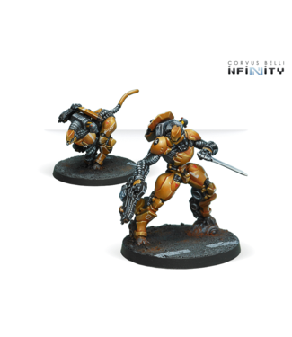 Infinity Sù-Jiàn Immediate Action Unit