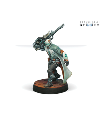 Infinity Sin-Eater Observants (Sniper)