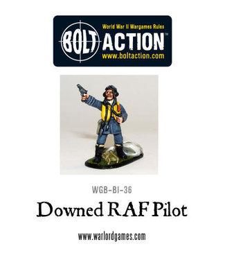 Bolt Action Downed RAF Pilot