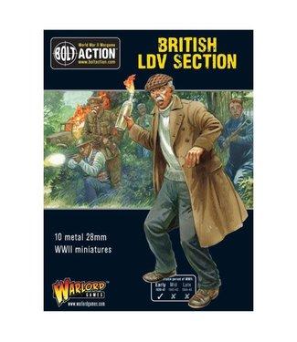 Bolt Action British LDV section