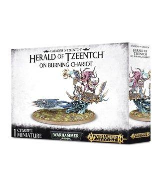 Age of Sigmar Herald of Tzeentch on Burning Chariot / Exalted Flamer of Tzeentch