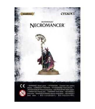 Age of Sigmar Necromancer