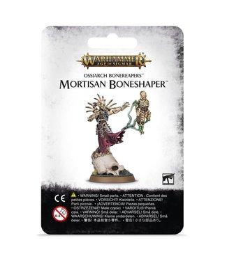 Age of Sigmar Mortisan Boneshaper