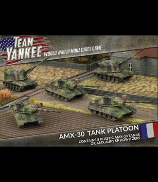 World War III Team Yankee AMX-30 Tank Platoon