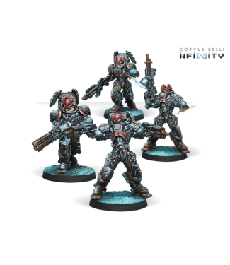Infinity Rodok, Armed Imposition Detachment