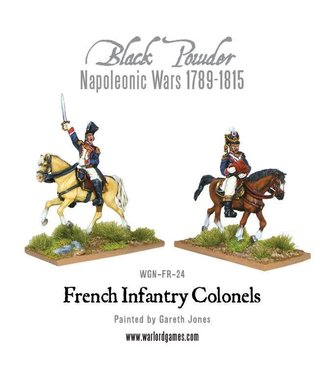 Black Powder Mounted Napoleonic French Infantry Colonels