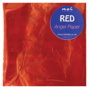 NSI Angel Paper -Red