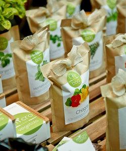 sac à pousser bio - menthe