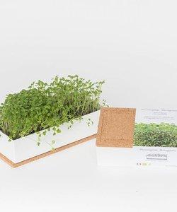 bio micro verts - cadeau d'affaires