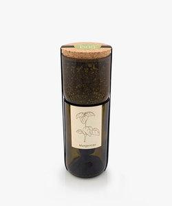 bouteille à épices bio - basilic