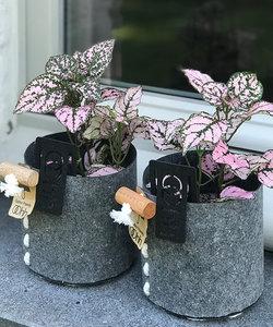 Pot de fleurs gris en feutre-éco, petit modèle