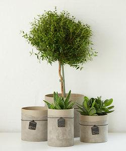 Cache-pot en papier recyclé avec apparence ciment, grand format