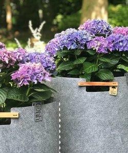 Set van 2 zachtgrijze hoge bloempotten in eco-vilt