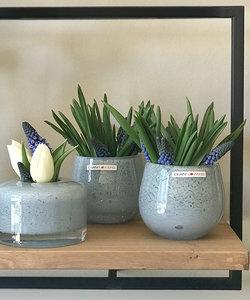 Photophore en verre convexe bleu clair - Dean Flowers