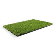 Royal Grass® XPlay 24