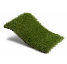 Royal Grass® Bloom