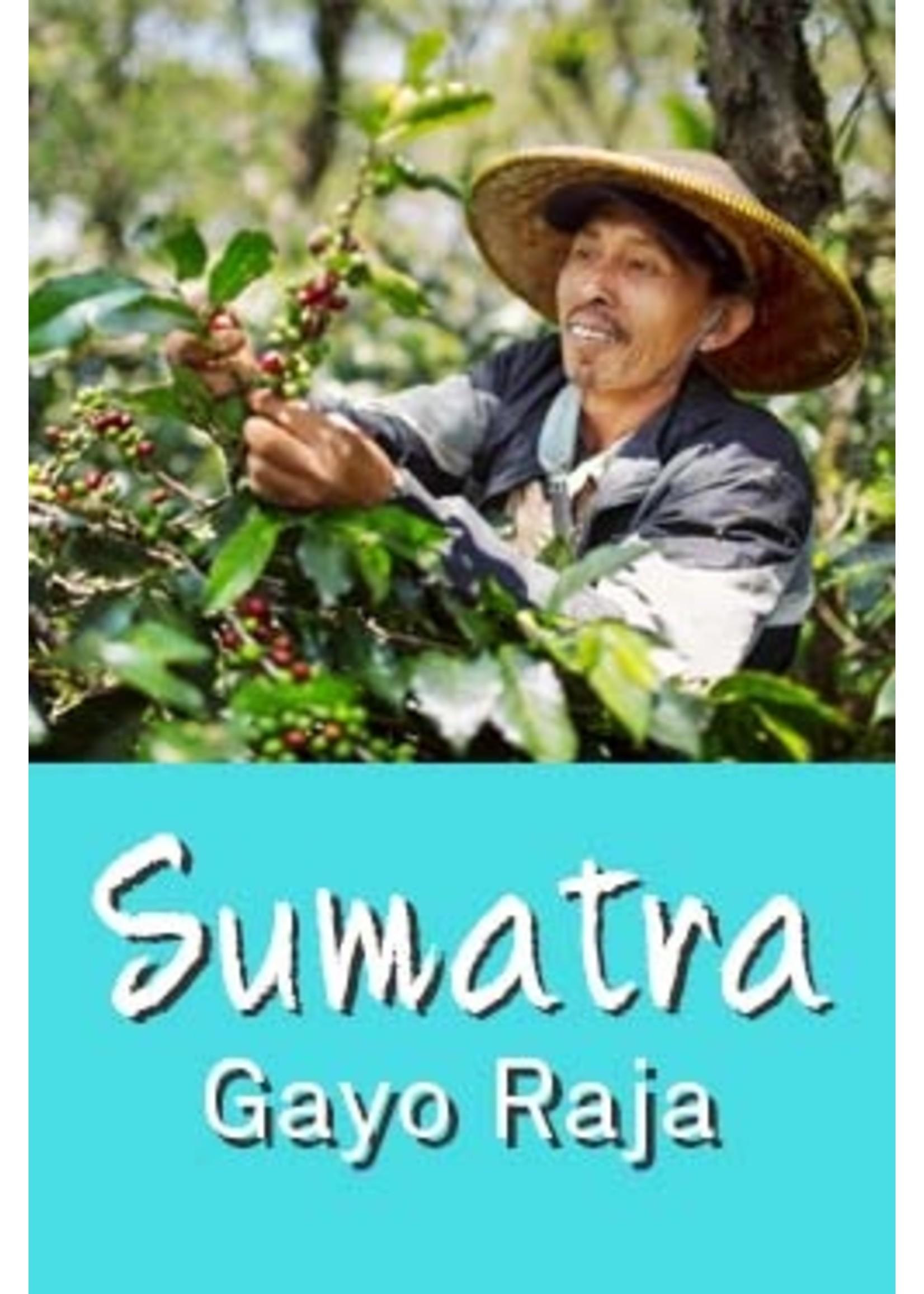 De KoffieMeulen Sumatra Gayo Raja Batak
