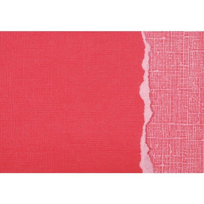 Darice Darice • Core Essentials Cardstock 30,5x30,5cm 235g Cardinal