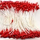 Meeldraadjes parel rood 1 mm 144 ST