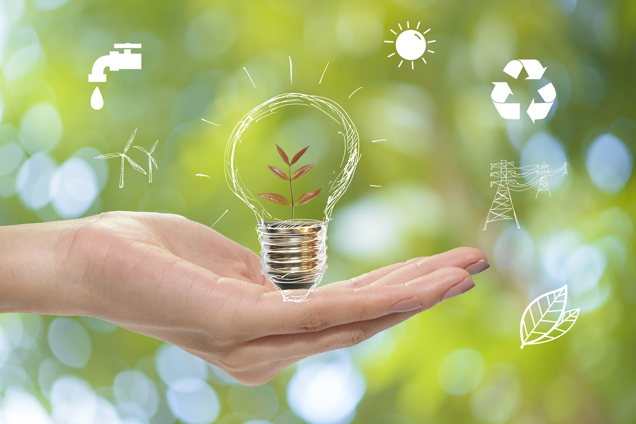 Small steps towards a sustainable world