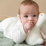 Little Dutch Tuimelaar Little Goose