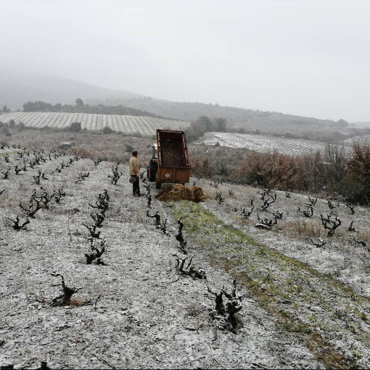 De winter bij La Tri Fontoj