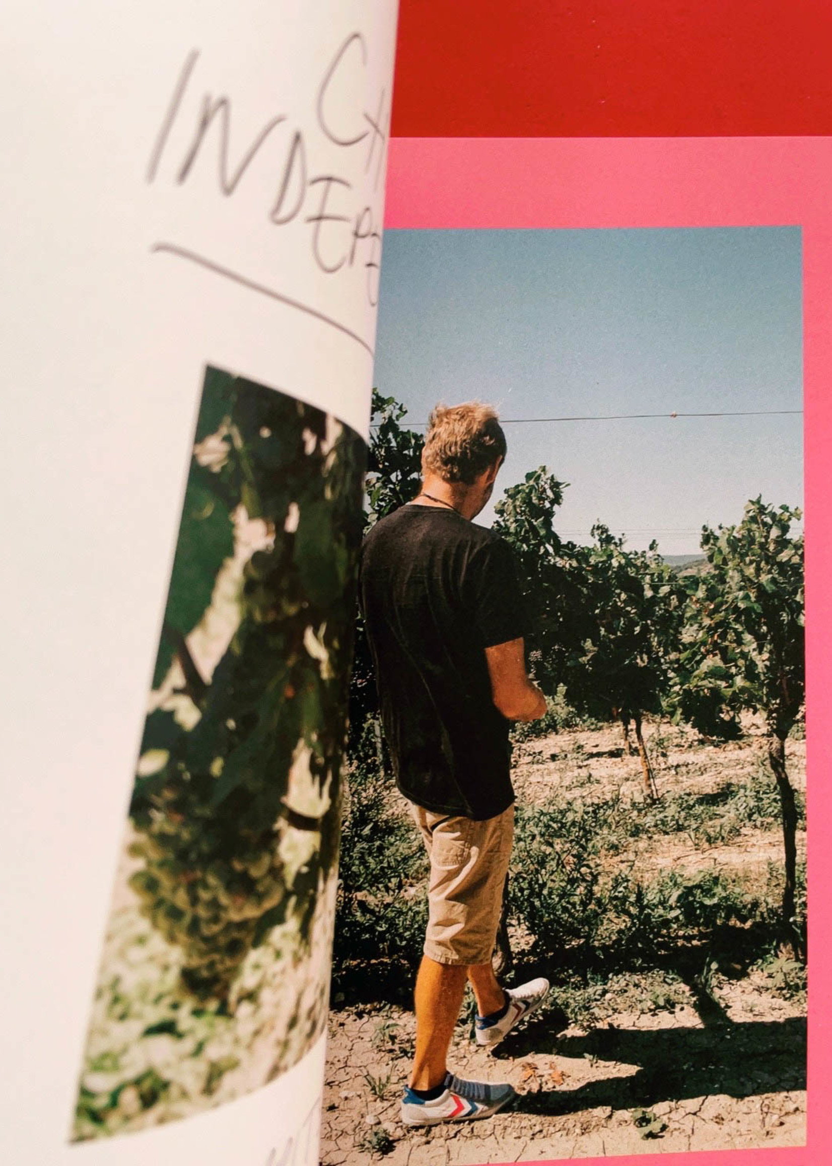 Pipette Magazine Pipette - the indie mag about natural wines - Issue 8