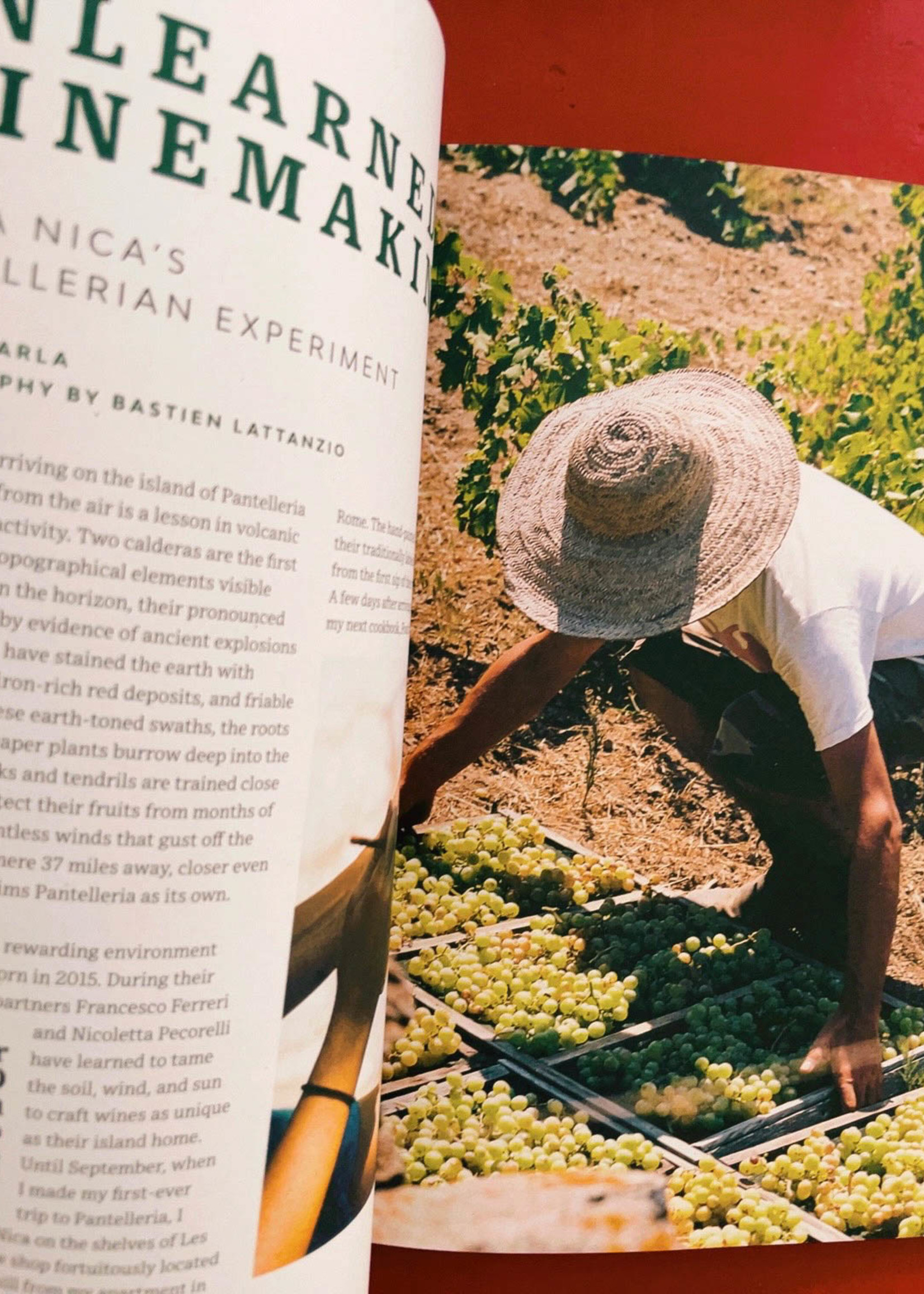 Pipette Magazine Pipette - the indie mag about natural wines - Issue 5