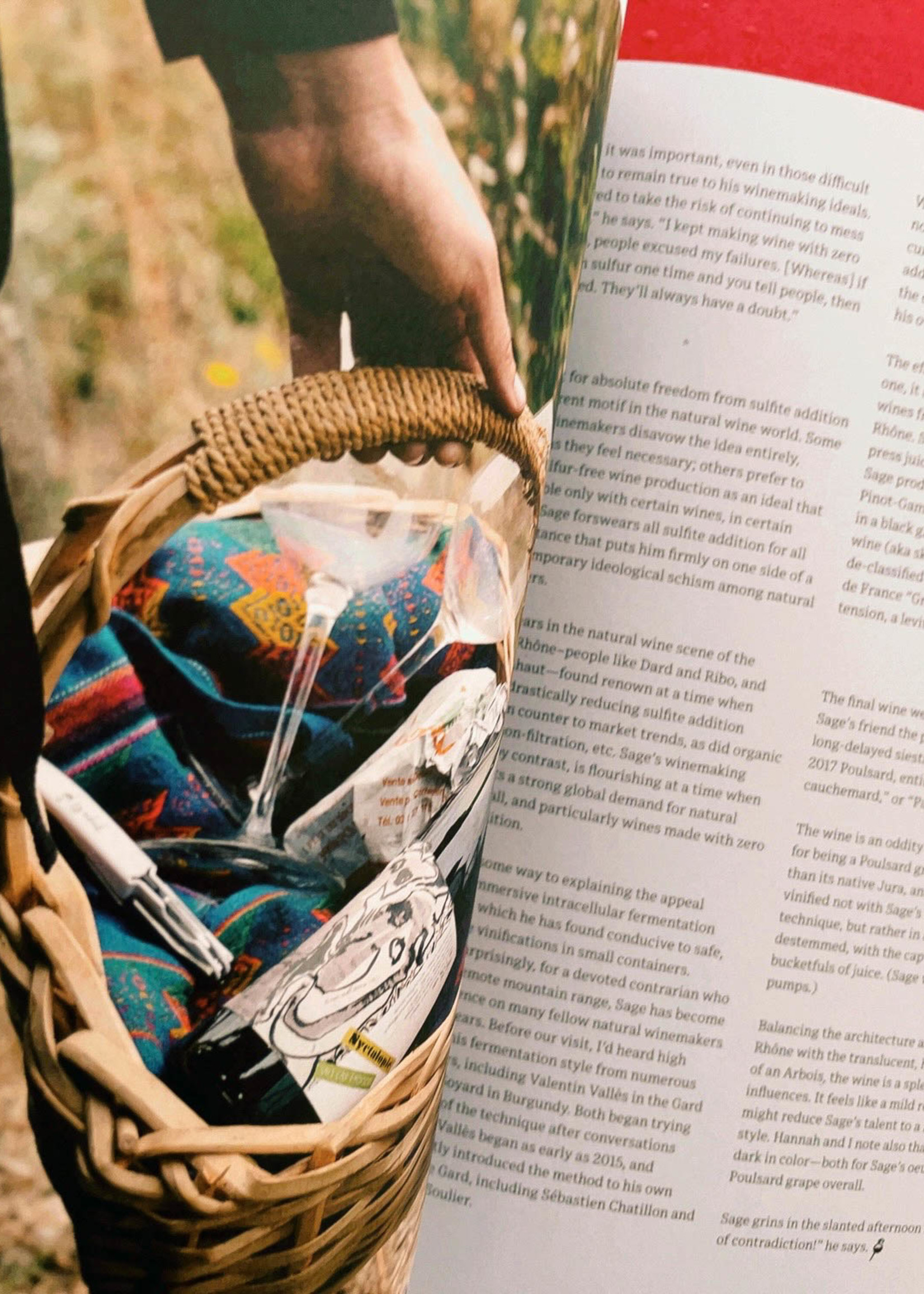 Pipette Magazine Pipette - the indie mag about natural wines - Issue 3