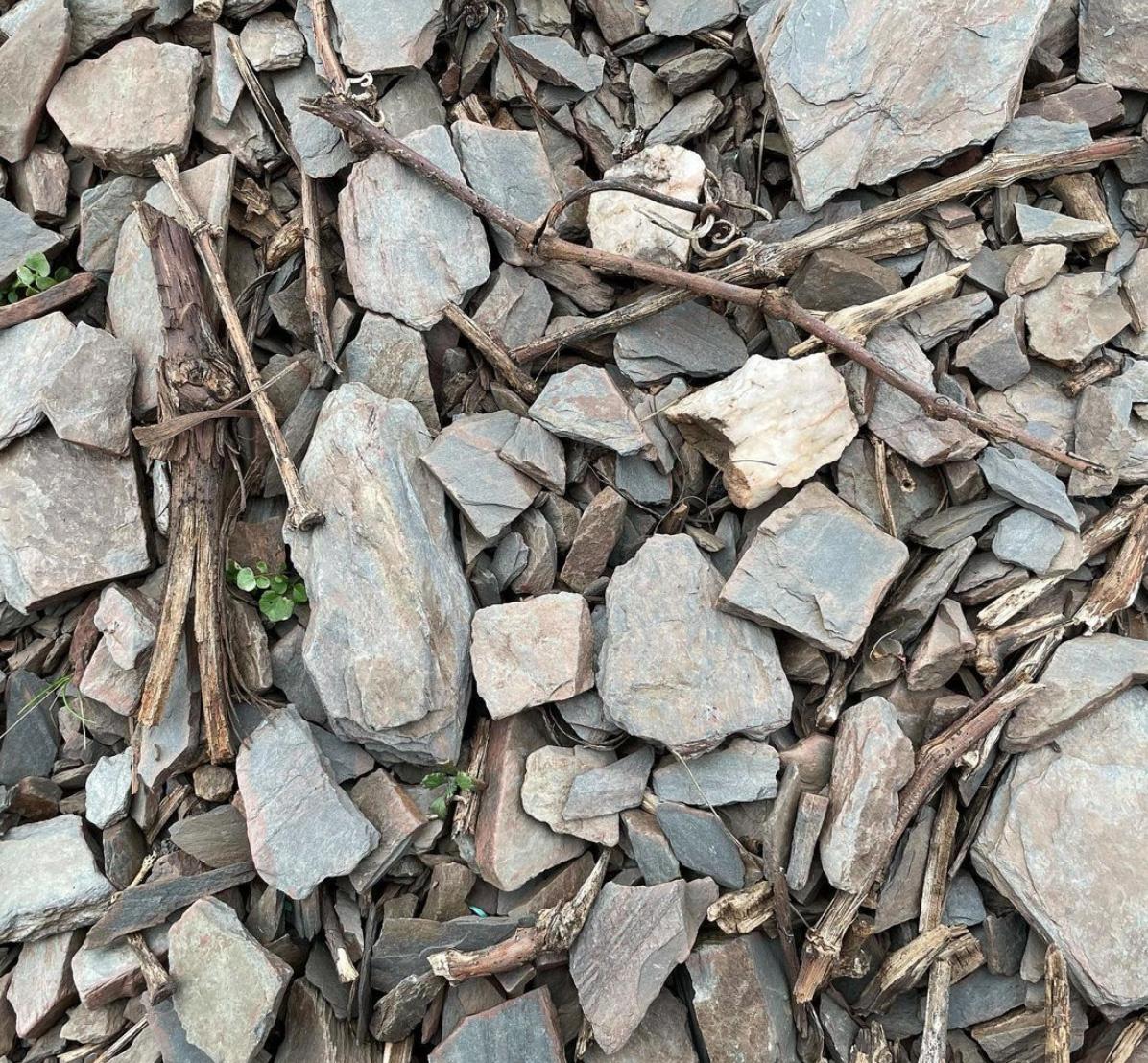 slate and quartz on the stony slopes above Niedermennig Hofgut Falkenstein