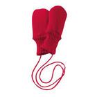Disana mittens