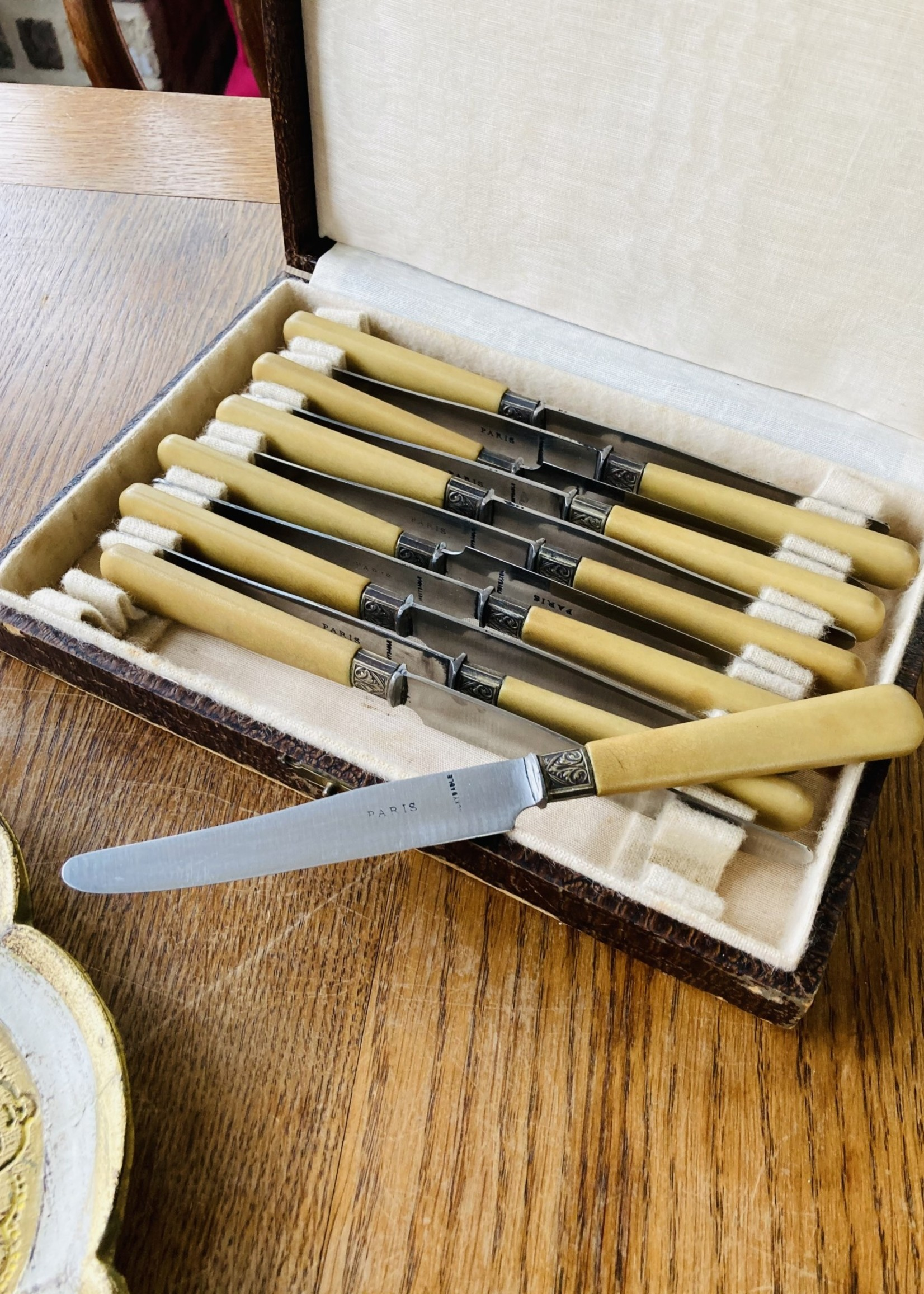 Box with 12 PARIS white handled knives