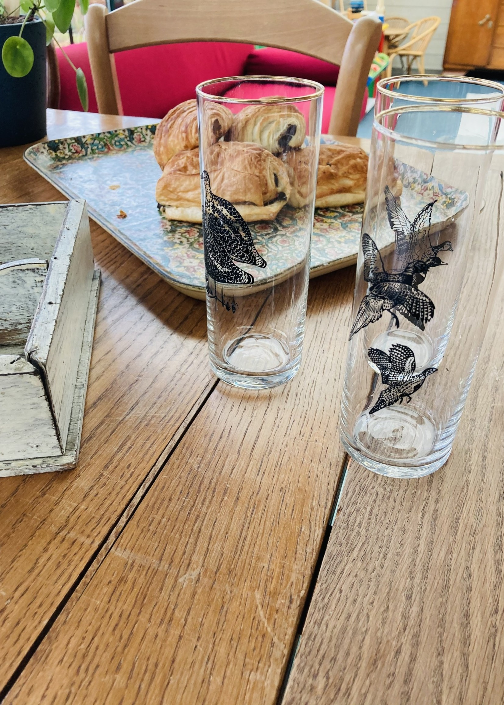 Vintage water glasses with bird design and golden border