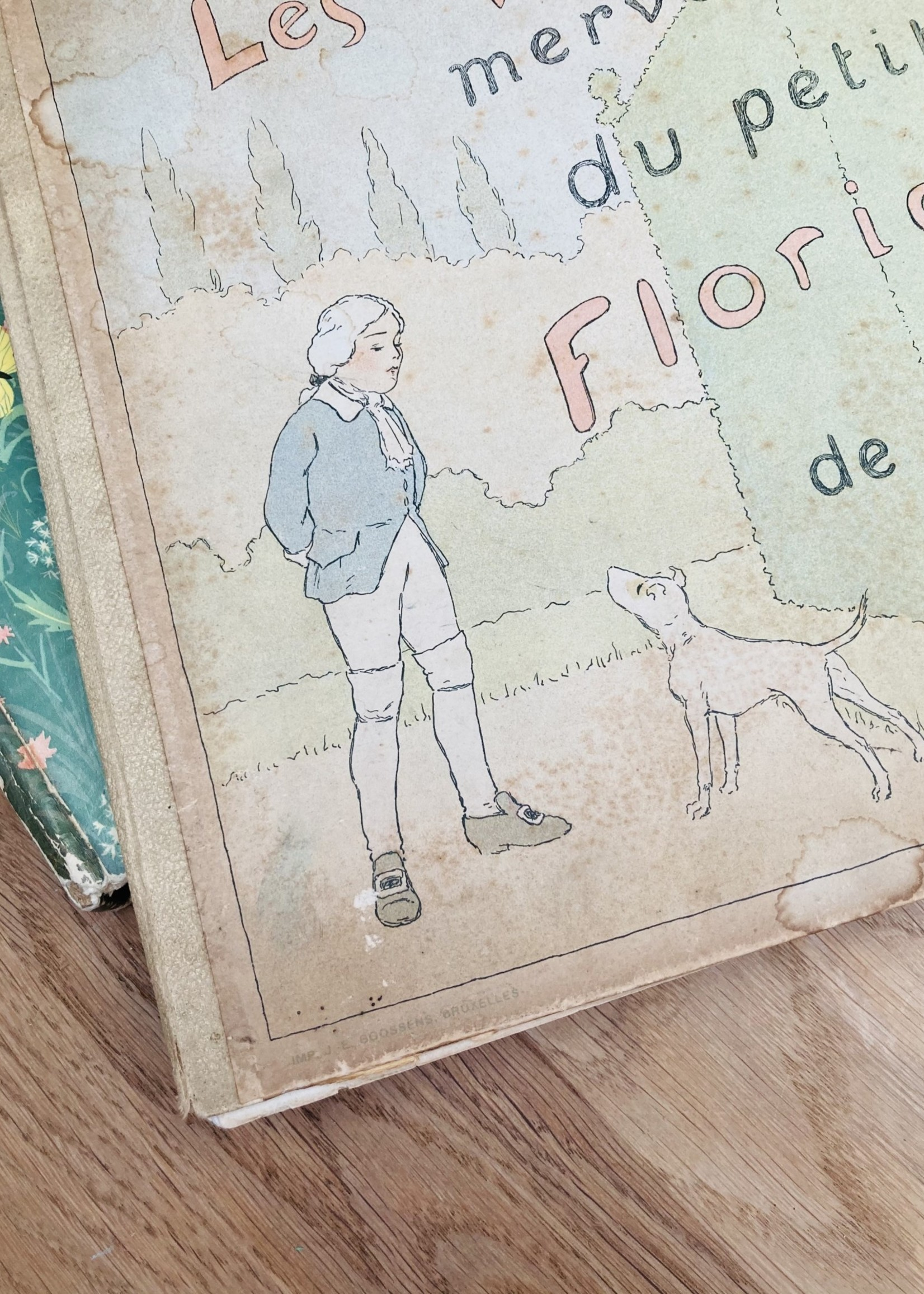 History The wonderful adventures of Floridor and Carabi 1915