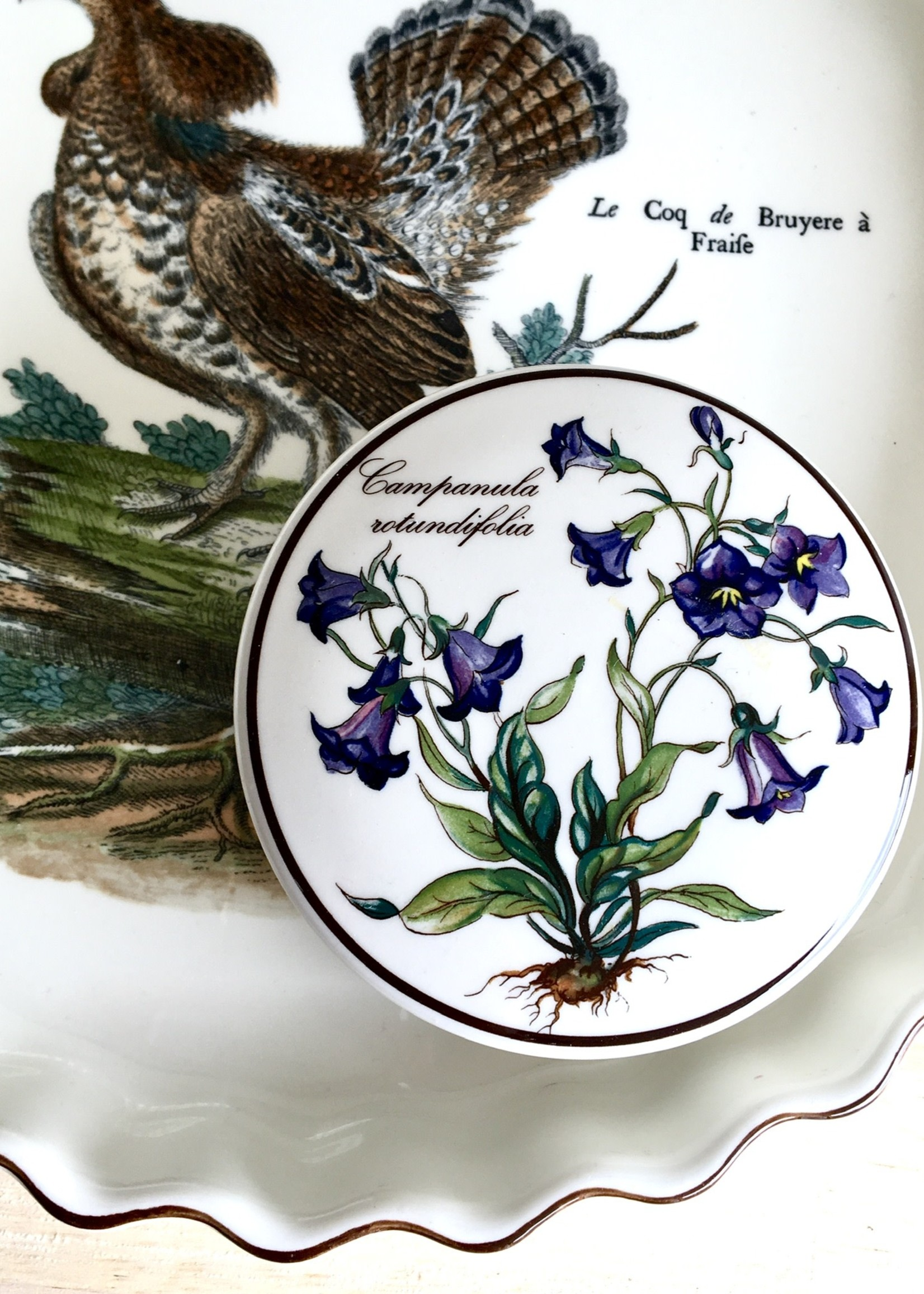 """Lidded pot in Villeroy and Boch ceramics with """"Campanula Ritundifolia"""" decoration"""