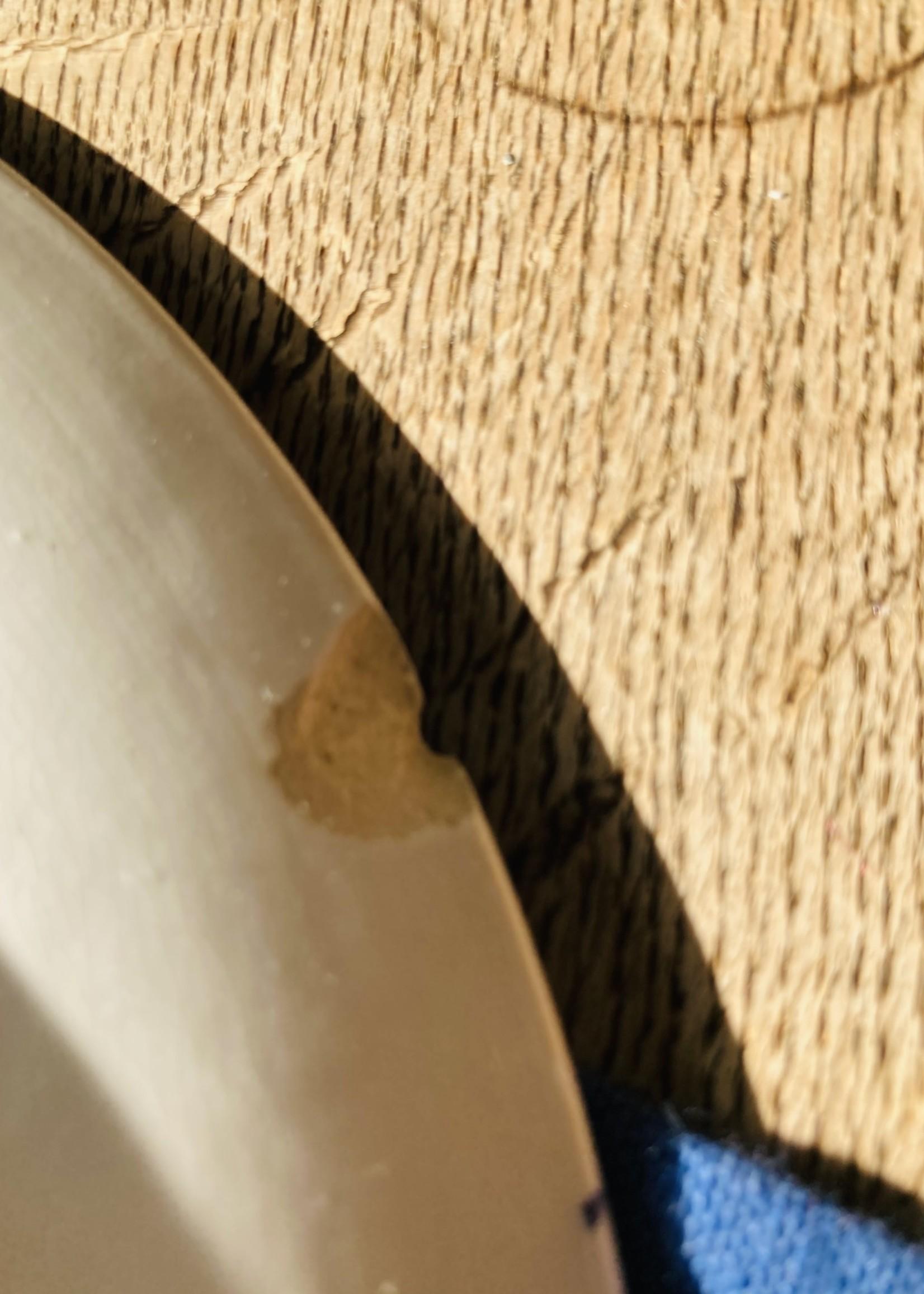 Large Plate Boch decor Dina