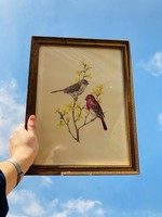 Golden frame with birds and yellow flowers