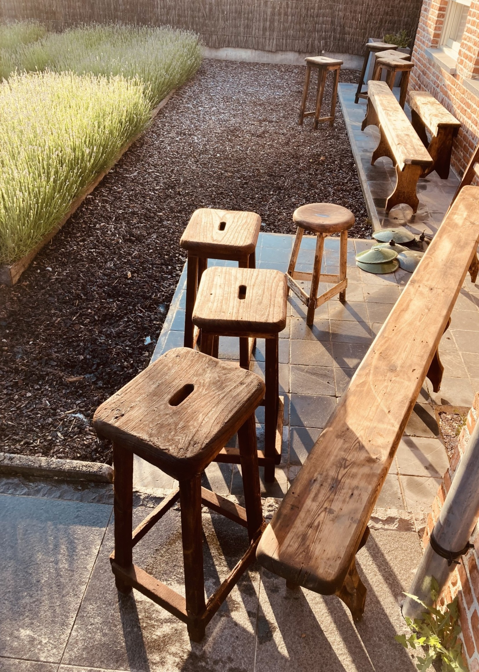 High industrial  bar stools in hardwood from 1905