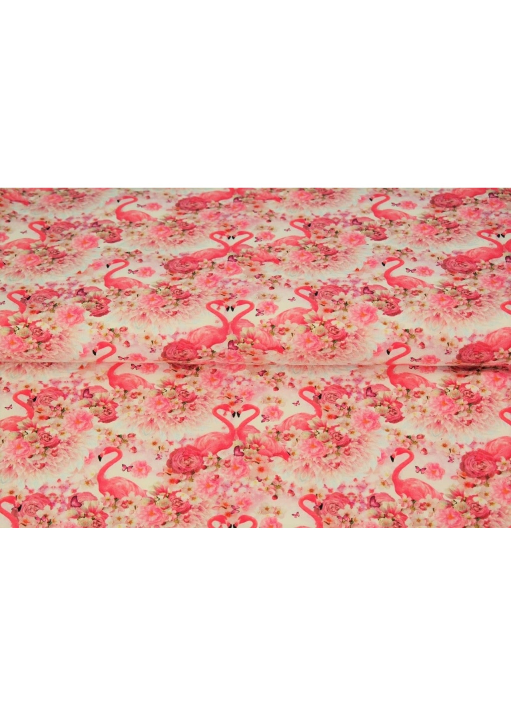 Stenzo Jersey Flamingo's