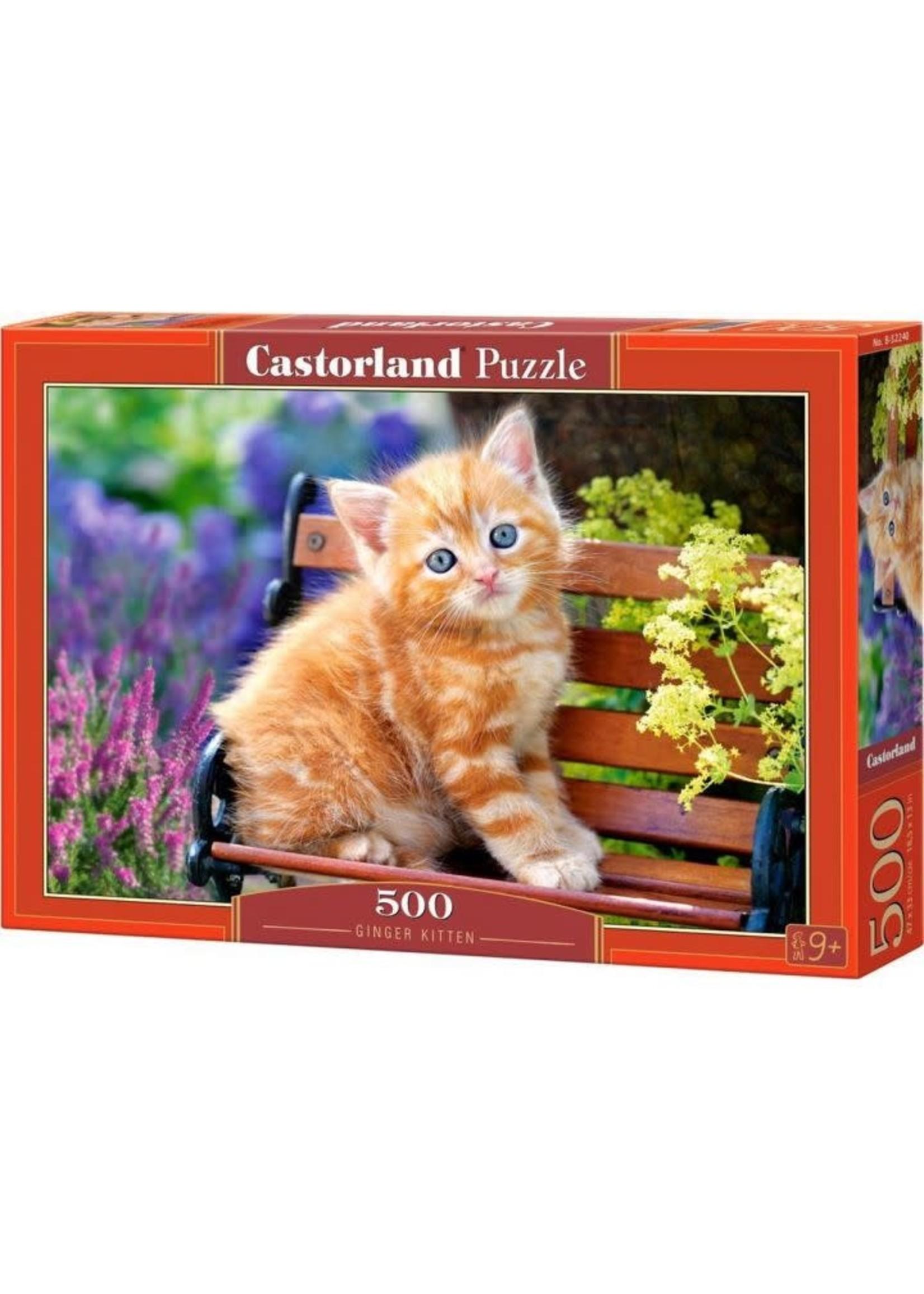 Castorland Ginger Kitten (500 Pcs.)